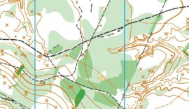 Tecnico-Autocad-Map-3D